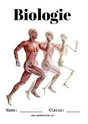 Biologie Deckblatt Körper