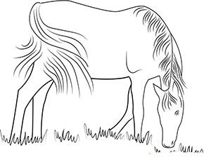 Ausmalbild für Pferd auf der Weide