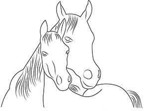 Ausmalbild für Pferd mit Fohlen