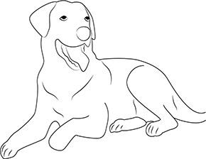 Ausmalbild für wachsamer Hund