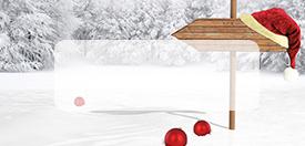 tischkarten f r weihnachten tischkarten weihnachten. Black Bedroom Furniture Sets. Home Design Ideas